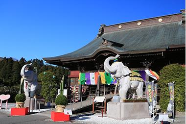 吉ゾウくん 金運アップブログ
