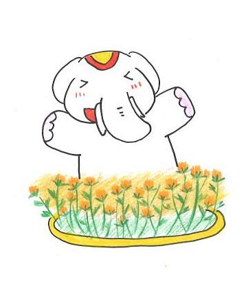 紅花と吉ゾウくんに会いに来れば運気上昇!だゾウ