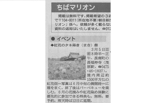 金運の花《紅花》のタネまきが「朝日新聞」に紹介!