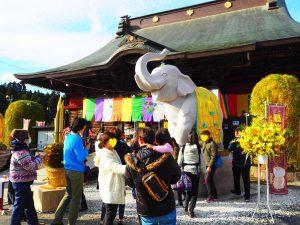 千葉県で金運アップ・宝くじ当選なら長福寿寺の「吉ゾウくん」