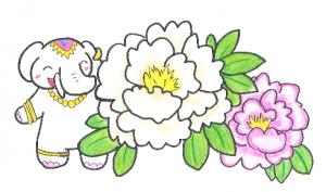 開運の花【牡丹】だゾウ