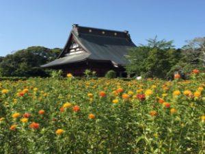 長福寿寺さん《金運》で かなり有名なお寺さんのようです