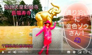 パワースポット探訪  【日本一の金運爆上げ!吉ゾウくんのお寺へ♪】